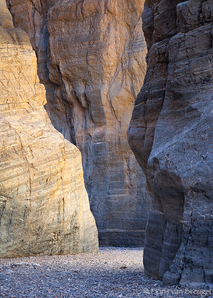 Canyon Gold, Fall Canyon, Death Valley National Park