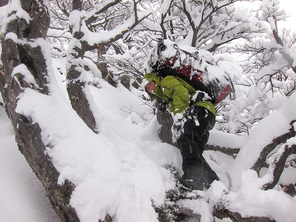 My friend Marc on his way up through the forest.