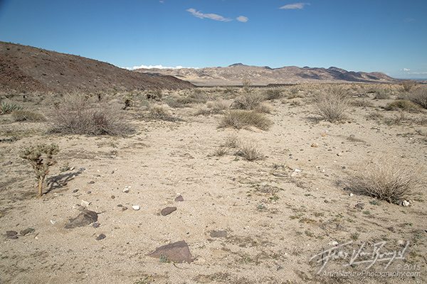 A typical and uninspiring desert view.