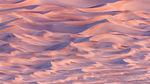 Pink Mesquite Sand Dunes Abstract, Death Valley National Park, California, the sandbox