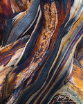 Bristlecone Wood Abstract, White Mountains, California