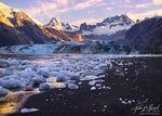 Icebergs and Black Sand Beach, Johns Hopkins Inlet, Glacier Bay National Park