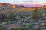Inyo Mountains, Sierra Nevada, Sage and Pinyon
