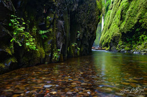 Waterfall in Oneonta Gorge, Columbia River Gorge, Oregon, around the corner from paradise,