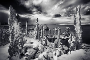 Mono Lake Tufa and Snow, Owens Valley, California, alien forest,