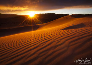 Golden Sunlight on Sand Dunes, Death Valley National Park, California,
