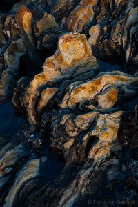 Rocks at Low Tide, Corona del Mar, California, tidal forms,