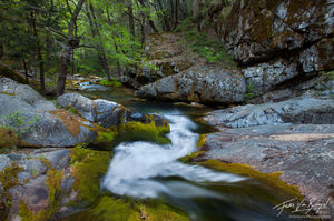 Wild River Waterfall, Kings Canyon National Park, California, slide into the wild, paradise, mossy, streams