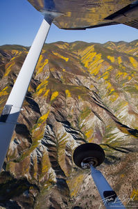 Temblor Range Aerial Wildflowers, Carrizo Plains National Monument, California, spring from the air, spring, cessna,