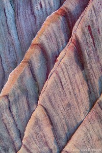 Sandstone Abstract, Valley of Fire State Park, Nevada, bleeding drapes