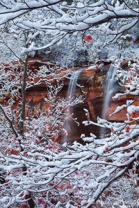 Fall Color Fresh Snow and Emerald Pools Waterfalls, Zion National Park, Utah, transitions, winter, emerald pools