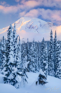 Winter in Paradise, Mount Rainier National Park, Washington, snow, sunset