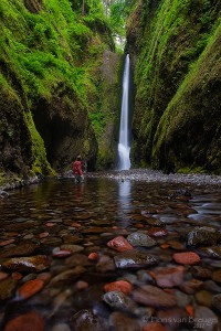 Hiker and Oneonta Falls, Columbia River Gorge, Oregon