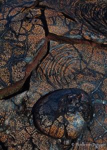 Pahoehoe Lava, Volcanoes National Park, Hawaii, big island