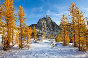 Prusik Peak, Enchantments, Fall Larches and Snow, Washington, Cascades