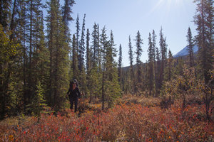 Hiking in the Arrigetch Peaks, Gates of the Arctic, Alaska