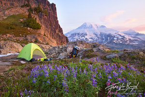 Backcountry Camping, Mt Rainier National Park, Washington