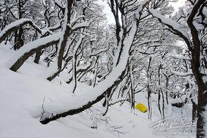 Tent, Patagonia, Winter