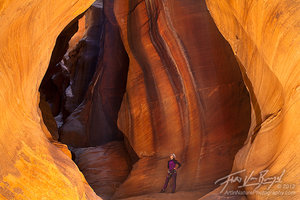 Canyoneer in Pine Creek Canyon, Zion National Park, Southwest