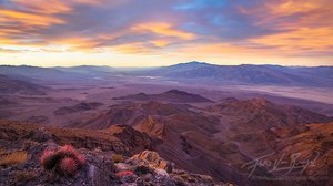 View of Death Valley, Barrel Cactus, California, panorama