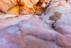 solitude, sandstone, nevada, deserts