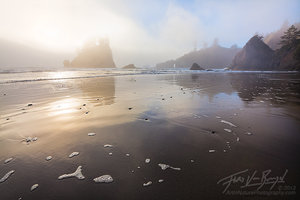 Second Beach, Mist, Olympic National Park