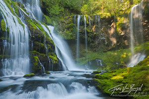 Waterfall Paradise, Gifford Pinchot, Washington