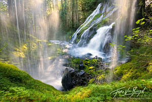 Waterfall Sparkles in Sunlight, Gifford Pinchot, Washington
