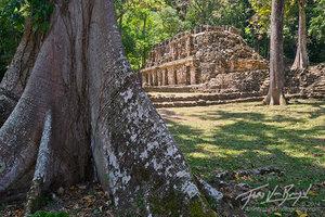 Yaxchilan Mayan Ruins, Chiapas, Mexico