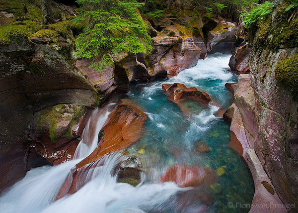 Avalanche Gorge, Glacier National Park, Montana, photo