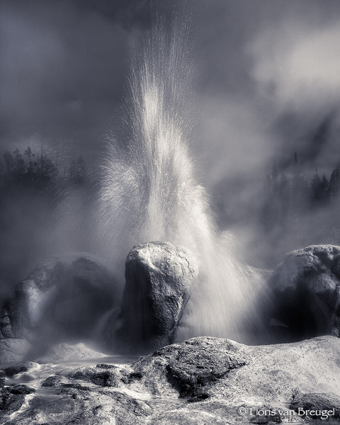 Grotto Geyser Erupting, Yellowstone National Park, Wyoming, hotwater spout, photo