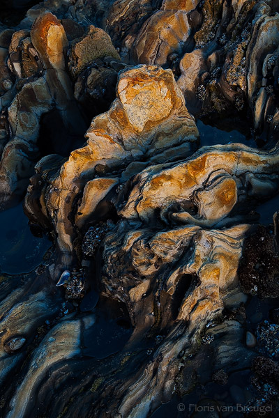 Rocks at Low Tide, Corona del Mar, California, tidal forms,, photo