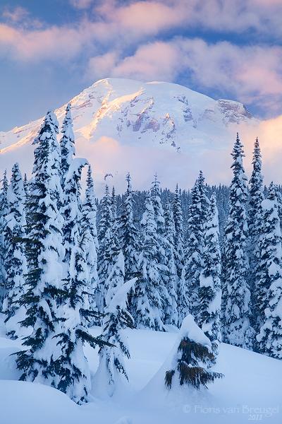 Winter in Paradise: Mt Rainier