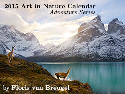 2015 Calendar by Floris van Breugel