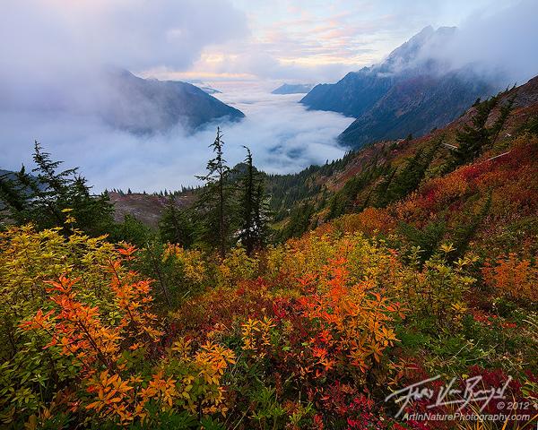 North Cascades Autumn Foliage, Mist Valley, Washington