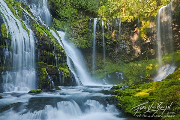 Waterfall Paradise, Gifford Pinchot, Washington