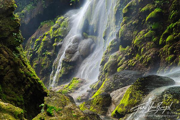Mossy Cascades, Rio la Venta, Chiapas
