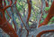 Manzanita Forest print