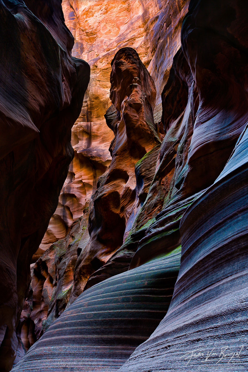 Sandstone and Reflected Light, Buckskin Gulch, Arizona, canyon character, canyon, photo