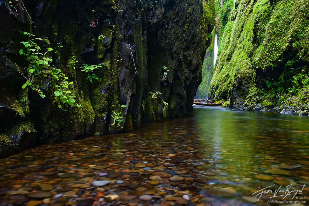 Waterfall in Oneonta Gorge, Columbia River Gorge, Oregon, around the corner from paradise, , photo
