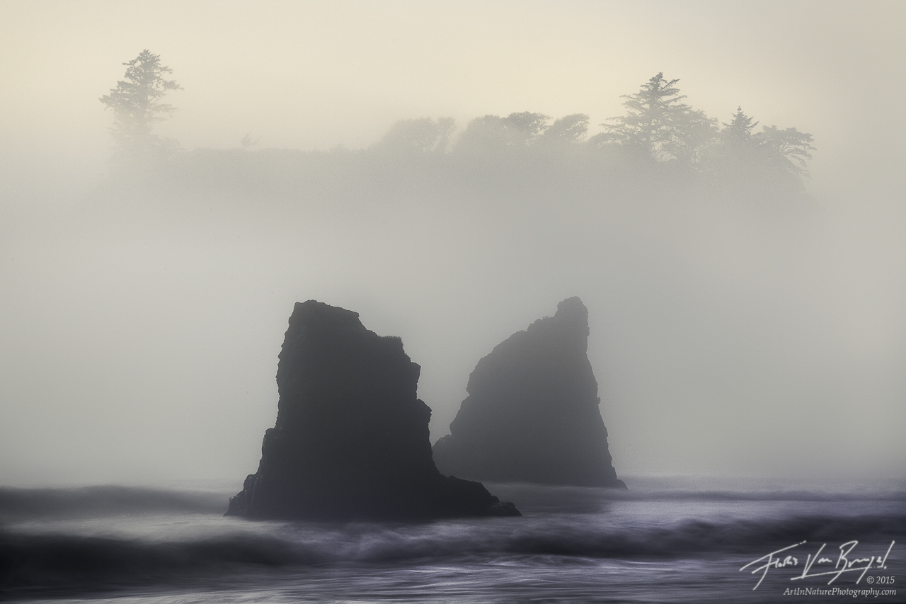 Ruby Beach Mists, Olympic National Park, Washington, mysterious mist, fog, summer, pacific northwest, photo