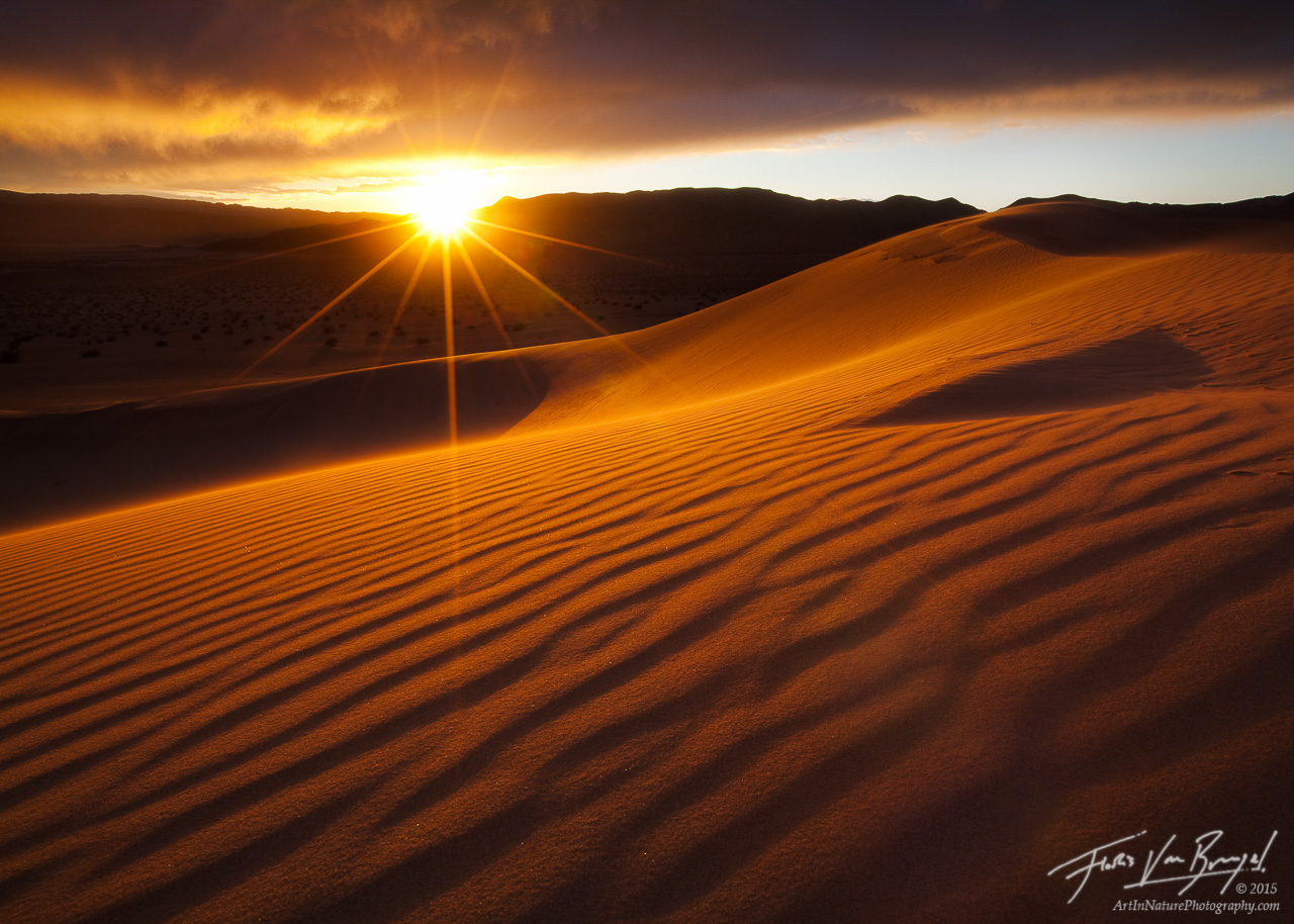 Golden Sunlight on Sand Dunes, Death Valley National Park, California, , photo
