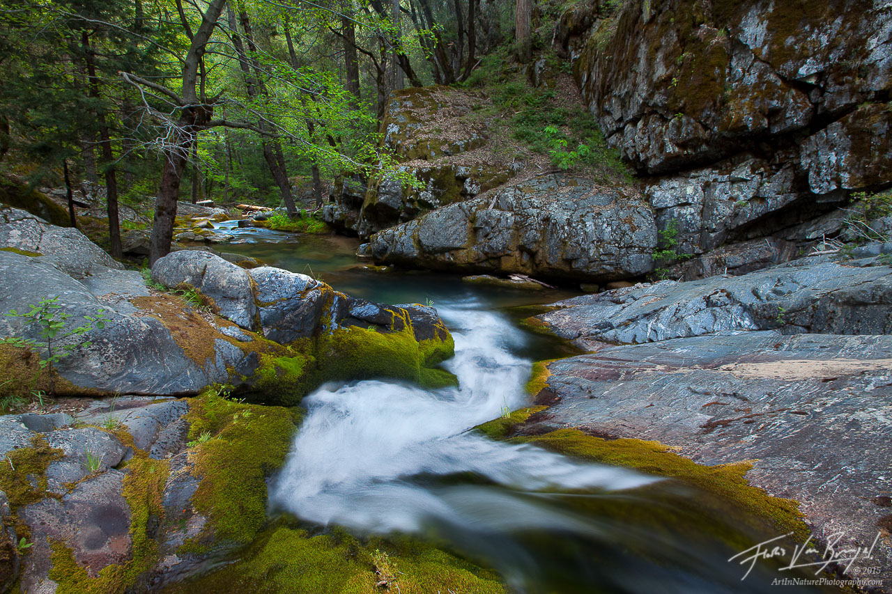 Wild River Waterfall, Kings Canyon National Park, California, slide into the wild, paradise, mossy, streams, photo