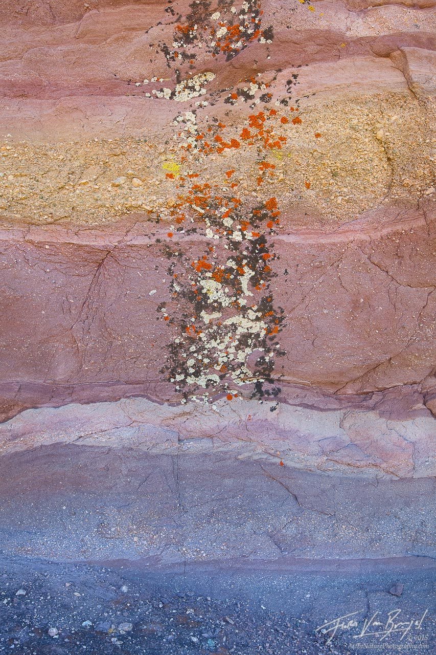Lichen on Rocks, Vasquez Rocks, California, photo