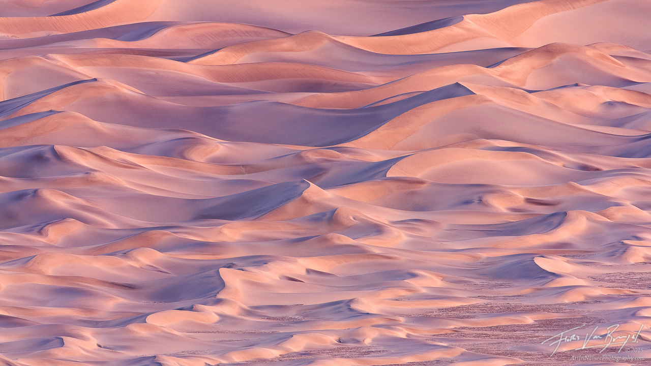 Pink Mesquite Sand Dunes Abstract, Death Valley National Park, California, the sandbox, photo