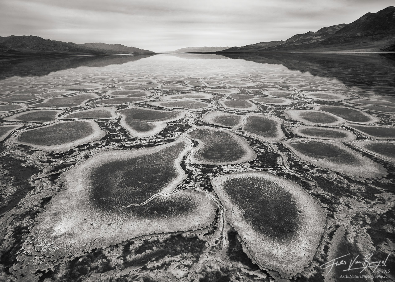 Flooded Badwater Salt Polygons, Death Valley National Park, California, infinity, salt, lake manly, photo