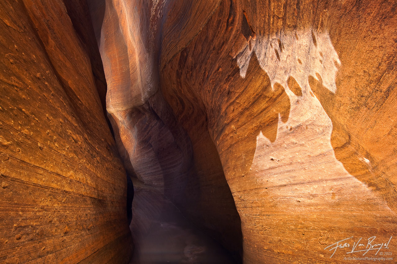Slot Canyon Light Reflections, Zion National Park, Utah, ghost of zion, photo
