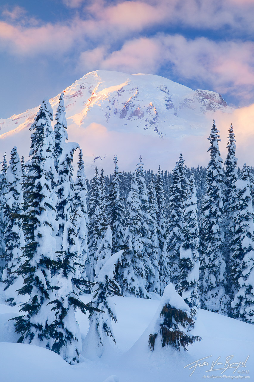 Winter in Paradise, Mount Rainier National Park, Washington, snow, sunset, photo