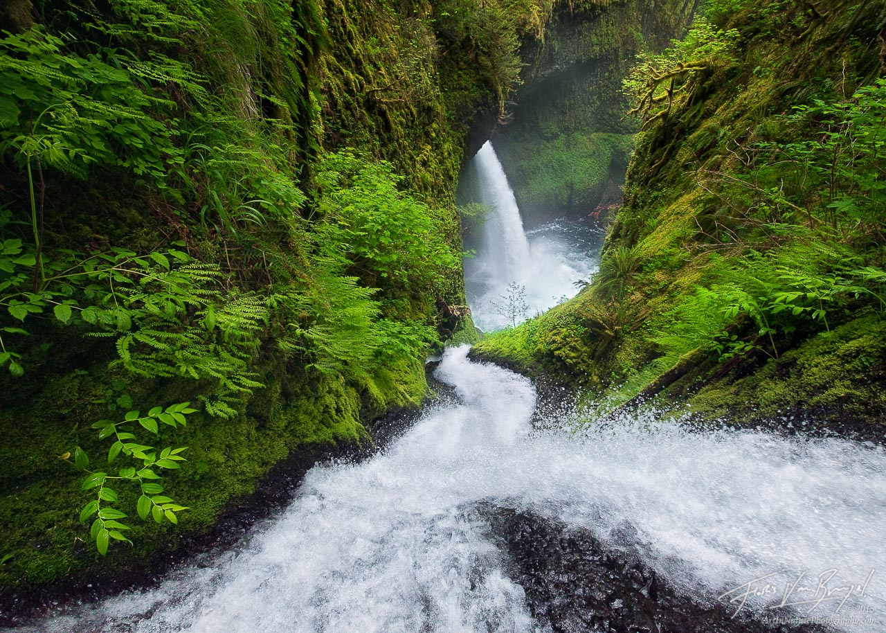 Waterfall, Columbia River Gorge, Oregon, photo