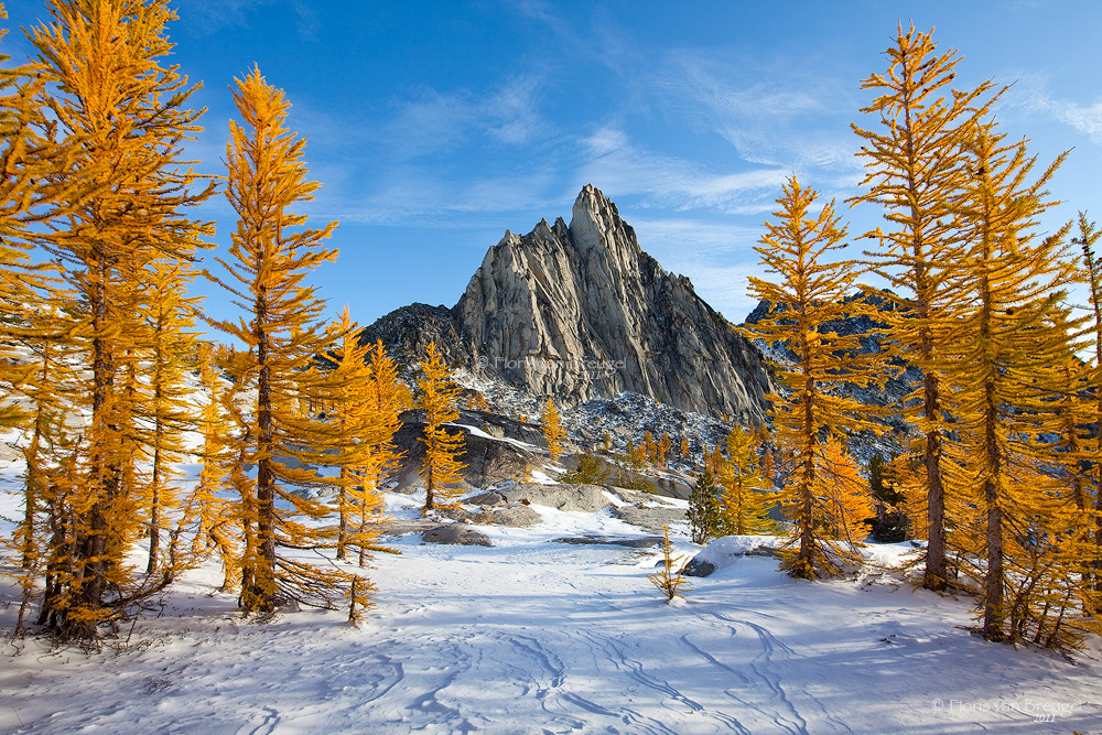 Prusik Peak, Enchantments, Fall Larches and Snow, Washington, Cascades, photo